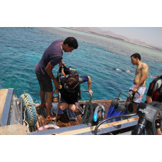 diving in ras mohamed for proffesional diver